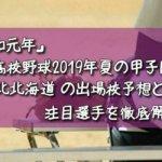 「令和元年」高校野球2019年夏の甲子園/北北海道の出場校予想と注目選手を徹底解説