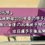 「令和元年」高校野球2019年夏の甲子園/南北海道の出場校予想と注目選手を徹底解説