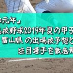 「令和元年」高校野球2019年夏の甲子園/富山県の出場校予想と注目選手を徹底解説