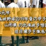 「令和元年」高校野球2019年夏の甲子園/山形県の出場校予想と注目選手を徹底解説