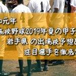 「令和元年」高校野球2019年夏の甲子園/岩手県の出場校予想と注目選手を徹底解説