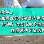 「令和元年」高校野球2019年夏の甲子園/新潟県の出場校予想と注目選手を徹底解説
