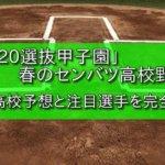 「2020選抜甲子園」春のセンバツ高校野球、出場高校予想と注目選手を完全解説